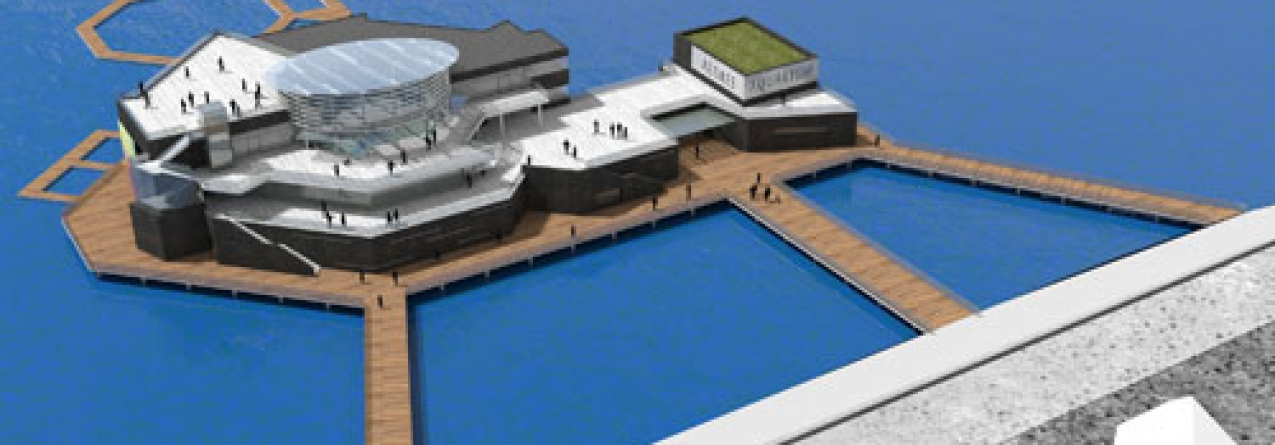 A empresa Picos de Aventura quer criar Parque Temático em Ponta Delgada para internacionalizar os mares dos Açores