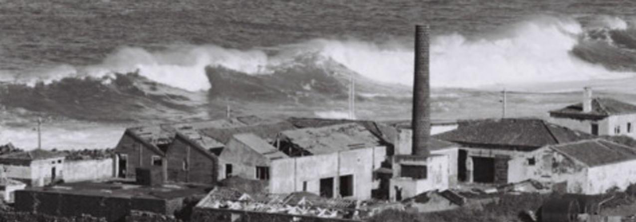 Governo dos Açores vai perpetuar memória da baleação em São Miguel