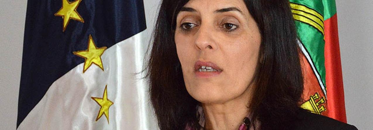 Governo dos Açores aprova novas medidas de apoio para agricultura e pescas