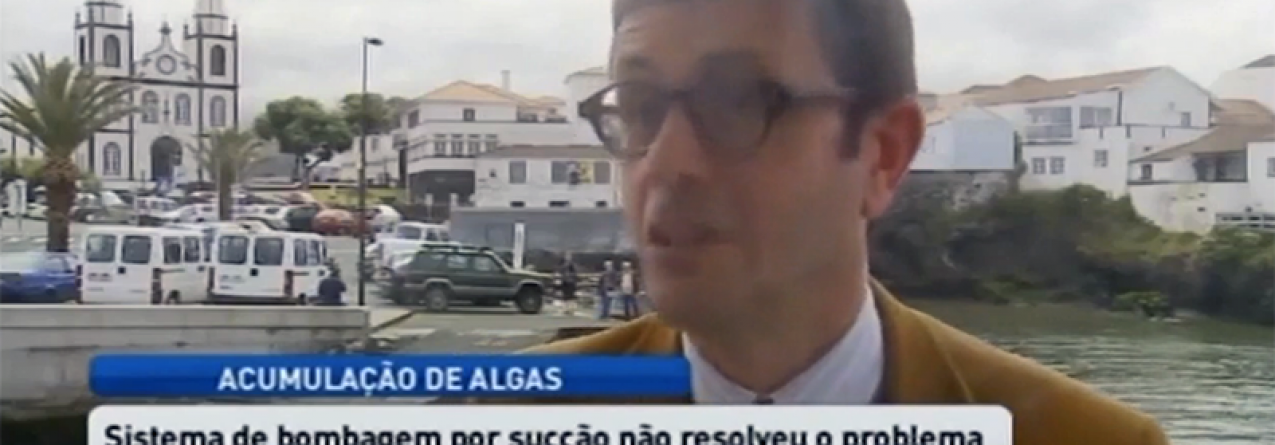 Algas persistem no porto da Madalena do Pico (Vídeo