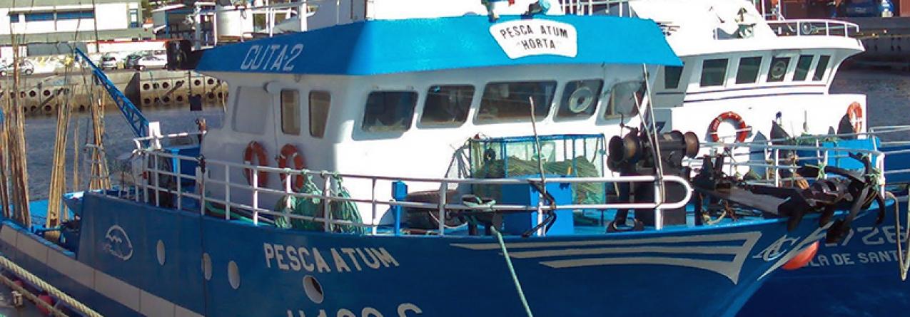 Governo da Madeira garante que pesca artesanal na região não põe em risco espécies