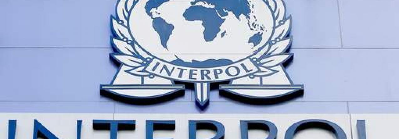 Interpol alerta: Portugal não está imune ao fenómeno da pesca ilegal