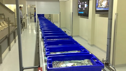 Hotéis e restaurantes vão ser autorizados a comprar peixe directamente nas lotas