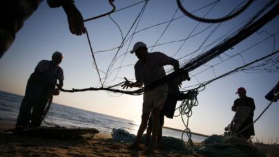 Apoio às pescas não aproveitado. Portugal devolve a Bruxelas 3 milhões de euros