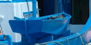 Açores mantêm programa de observação do atum, apesar da fraca safra dos últimos anos