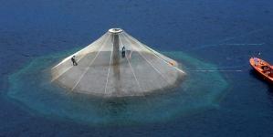 Empresário recebe grupo que vai estudar instalação de gaiolas para produção em aquacultura na ilha de São Miguel