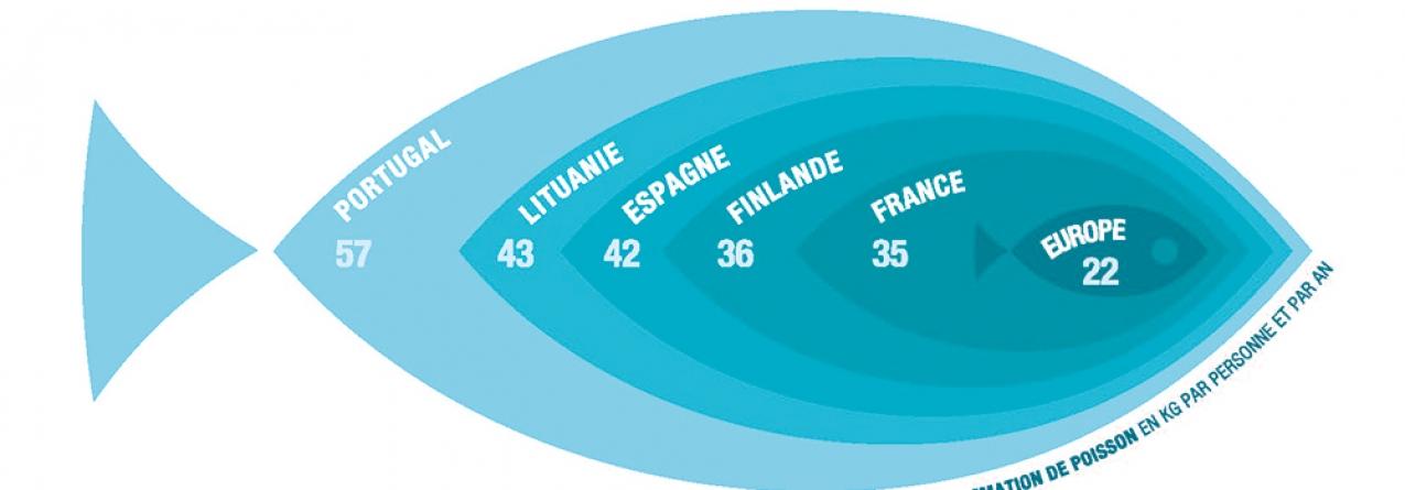 Dia da Dependência de Pescado: Europa depende de peixe e marisco estrangeiro