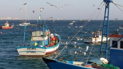 A Pequena Pesca é um potencial para a sustentabilidade