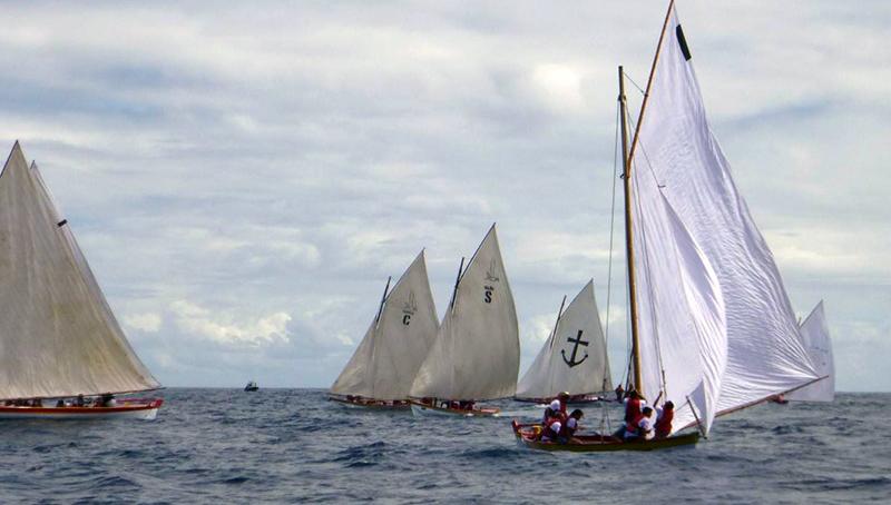 Regata de botes baleeiros