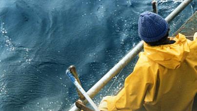 Açores // Programa de Observadores a bordo das embarcações com licença para a Arte de Linha de Mão e Palangre