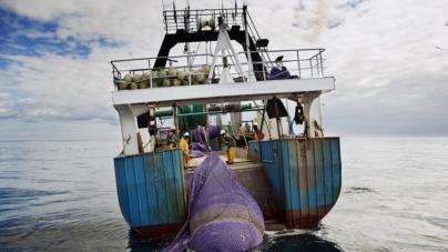 Os limites de pesca da UE para 2016 confirmam a necessidade de medidas mais concretas por parte dos ministros das pescas
