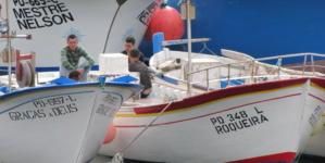 Pescadores admitem que existem embarcações a mais nos Açores para os recursos existentes