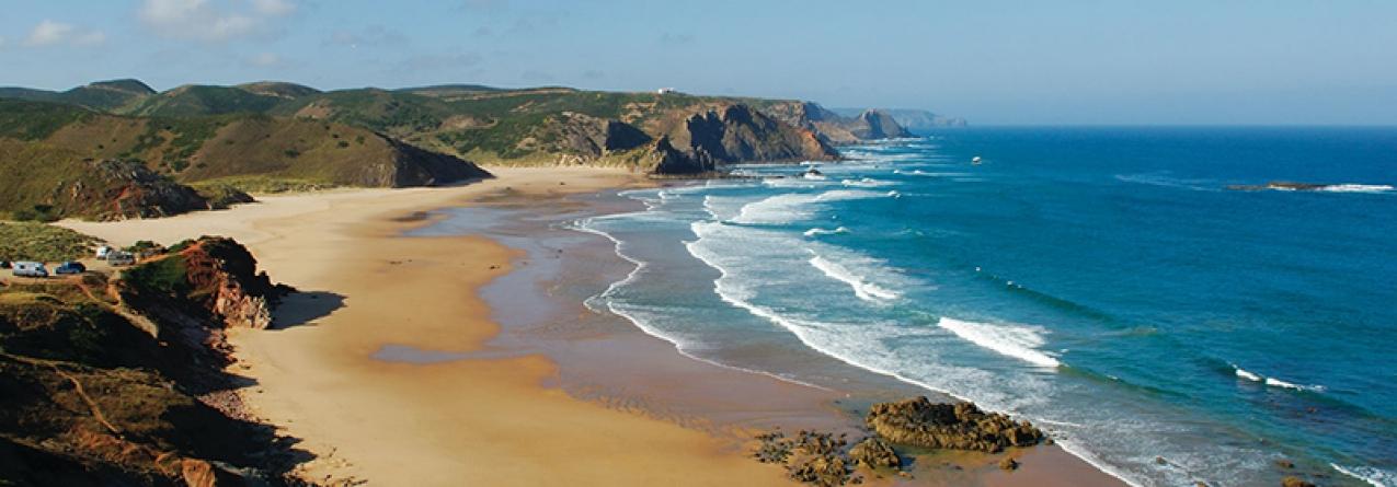 Aumento da temperatura da água do mar está a ter consequências na costa portuguesa, como a redução do pescado