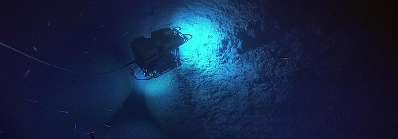 ATLAS, o maior estudo de sempre dos ecossistemas do Atlântico profundo