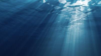 Esclarecimento da Secretaria Regional do Mar, Ciência e Tecnologia
