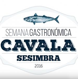Semana Gastronómica da Cavala em Sesimbra