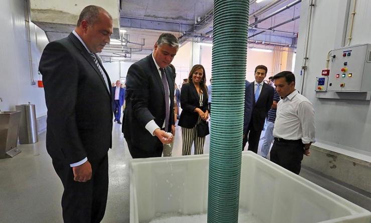 Inauguração do novo Entreposto Frigorífico de Ponta Delgada