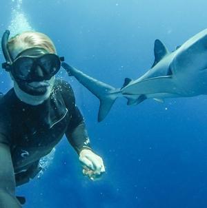 """""""Estamos nos Açores a trocar cêntimos por milhões com os tubarões…."""""""