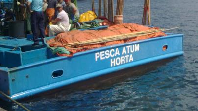 Produtores de atum dos Açores defendem reforço de apoios financeiros