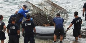 Missão Selvagens – 2ª fase de trabalhos na Estrutura da Autoridade Marítima nas ilhas