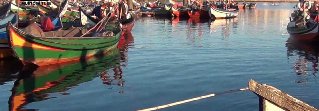 Câmara de Ílhavo faz protocolo com pescadores para promover pesca artesanal