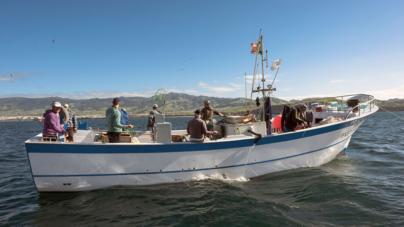 Pescadores de São Miguel estão a pôr em causa construção de escola de formação da pesca no Faial