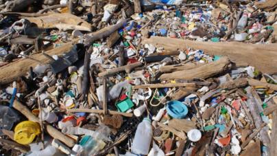 Esferovite, garrafas, paletes e sacos. Lixo nas águas portuguesas preocupa investigadores