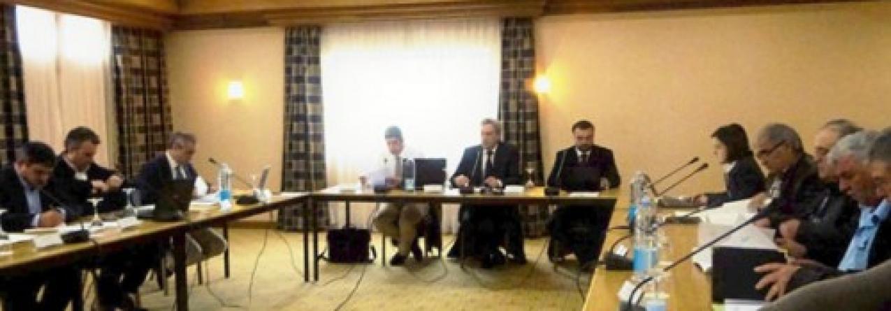 Governo dos Açores e parceiros do setor de acordo sobre novas medidas de gestão da quota do goraz