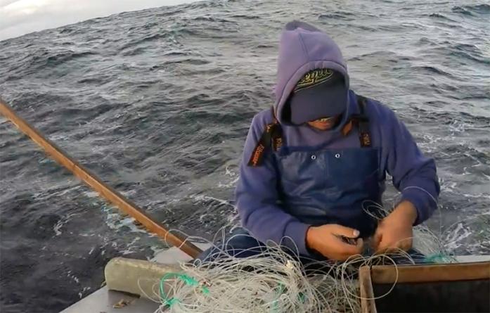 A Cooperativa Porto de Abrigo exige que paragem de pesca do goraz nos Açores seja financeiramente compensada