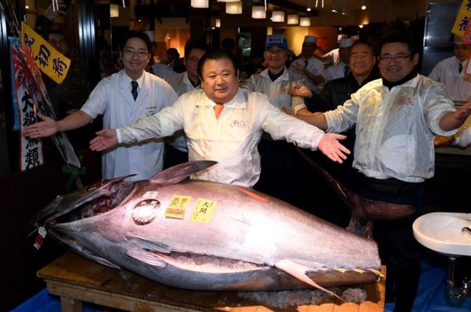 Japão. Atum vendido por mais de 605 mil euros em leilão