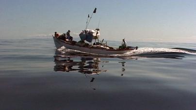 Há pescadores de chicharro que têm vergonha de levar 20 euros por mês de salário para sustentarem a família