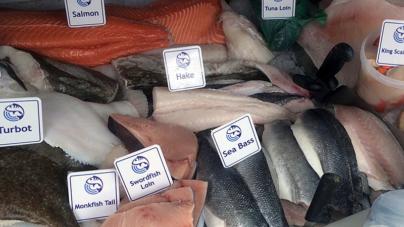 A globalização do peixe: os mares ficam vazios e as peixarias enchem