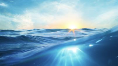 Sobre-exploração e lixo marinho entre os principais problemas dos oceanos