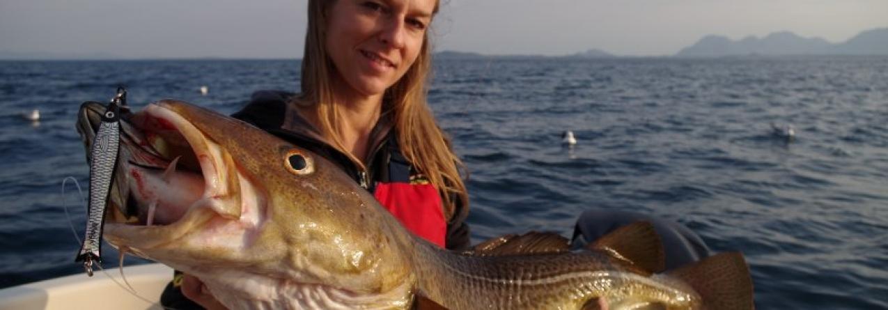 Noruega promove no Porto bacalhau fresco sazonal 'skrei'