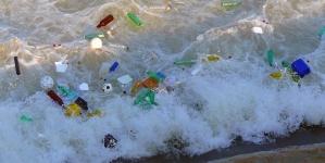 O Governo dos Açores integra consórcio europeu sobre impacto do lixo marinho