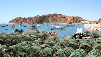 Algarve // Câmara unânime na rejeição de aquacultura em mar aberto ao largo de Albufeira