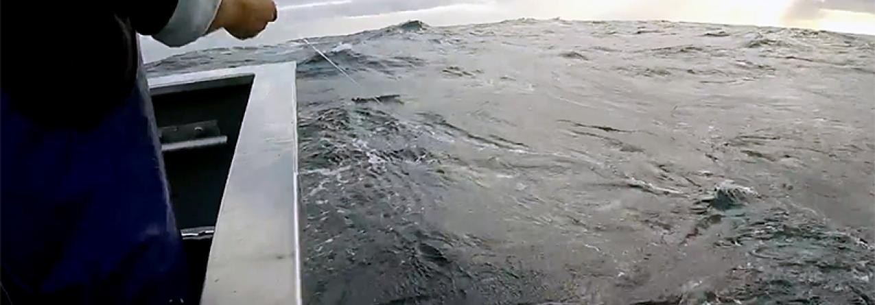 Pescadores dos Açores com vencimentos entre 100 e 200 euros mensais