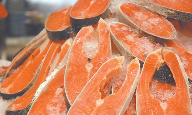 No mercado continental o salmão é vendido a 8 euros e nos Açores os preços estão entre 16 e 18 euros