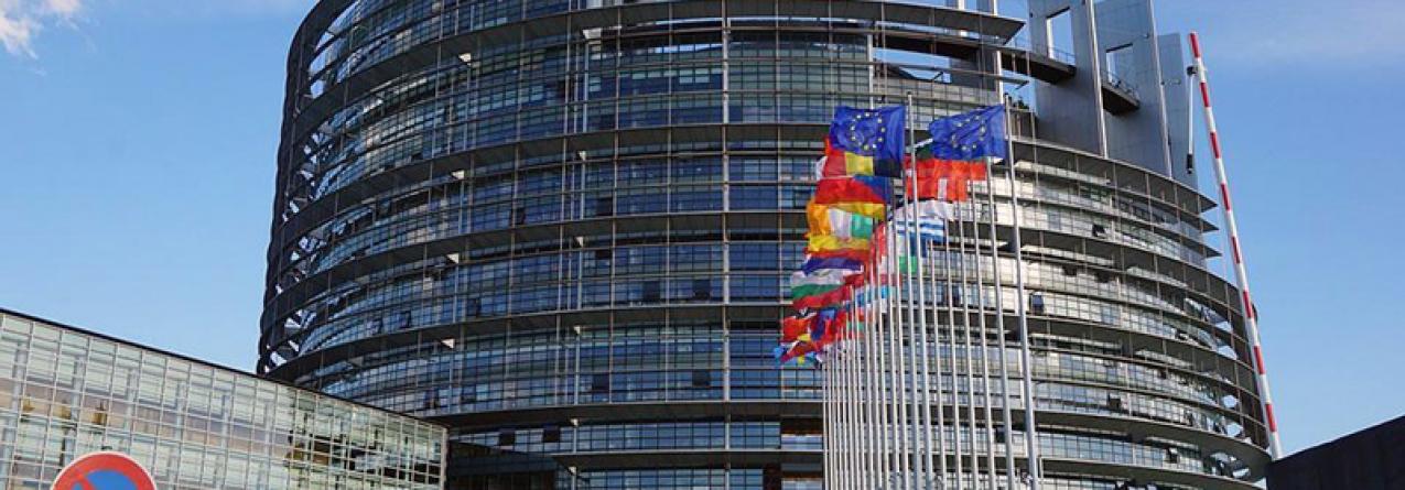 Europa: recomendado novo fundo para as Pescas destinado a apoiar as RUP