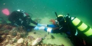 """Dois cepos de âncora romana em chumbo """"salvos"""" do fundo do mar em Lagos"""