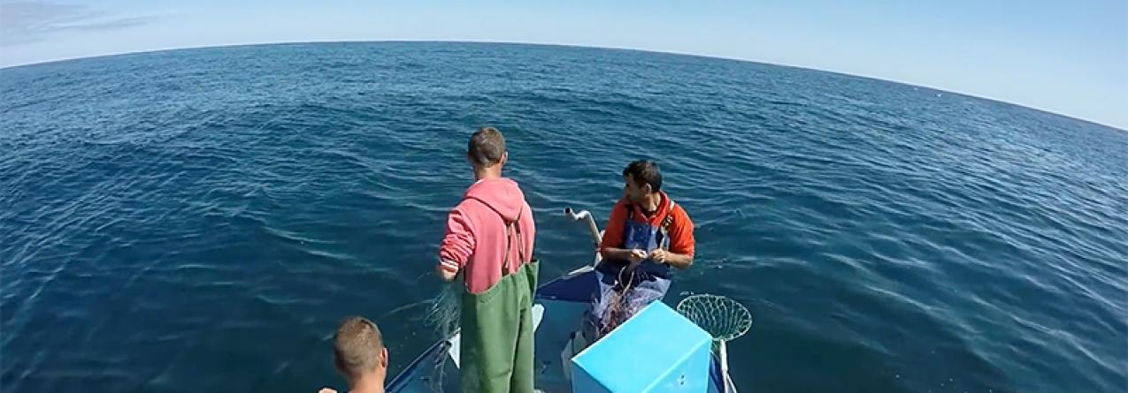 Açores // Aposta na formação pretende dignificar profissão de pescador, afirma Diretor Regional das Pescas