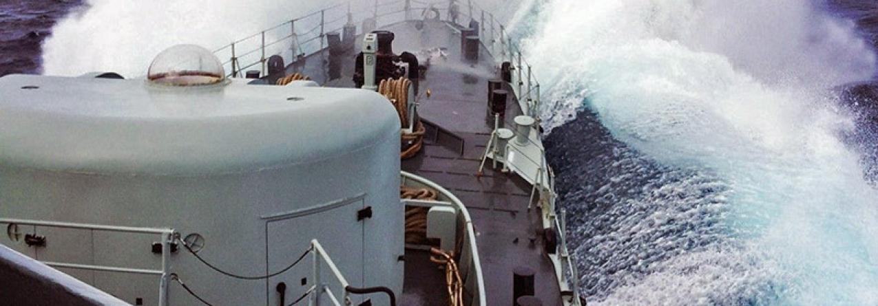 Resgate de três tripulantes de veleiro que sofreu danos em colisão com baleia nos Açores
