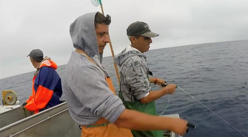 Quarenta pescadores deixaram, em média, por ano, a actividade da pesca nos Açores