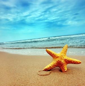 Governo determina criação de Conta Satélite do Mar