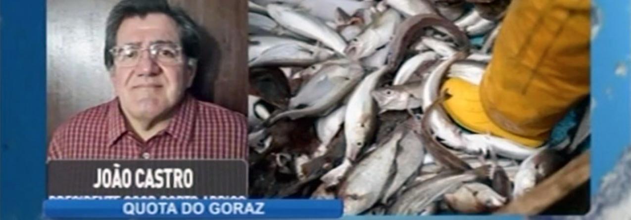 Presidente da Porto de Abrigo preocupado com as consequências das novas regras da quota do goraz (vídeo)