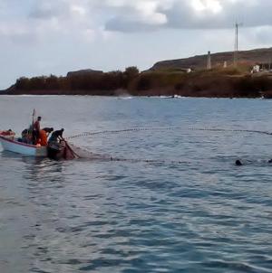 Polícia Marítima interceta embarcação em atividade de pesca ilícita e apreende 64 Kg de pescado na ilha de Santa Maria