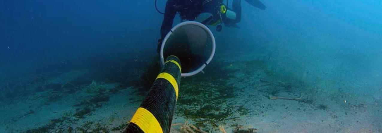 """Açores // Questão dos cabos submarinos é de """"grande prioridade"""""""