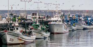 Barco de pesca naufragou ao largo do porto de Leixões