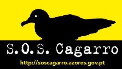Campanha SOS Cagarro prolongada até 22 de novembro