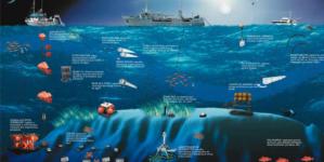 Banco Condor permanece encerrado à pesca até 2020 para continuação de estudos científicos